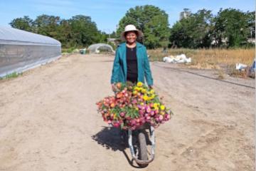 La Fondation Terre Solidaire soutient « Fleurs d'Halage », un projet de réhabilitation de friches en Île de France